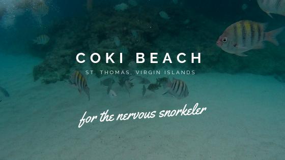 Coki Beach St Thomas Snorkeling